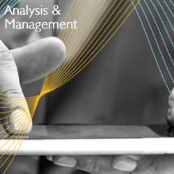 Analysis and Management Analysis & Management