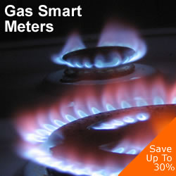 gas smart meters Business Smart Meters