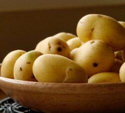 Mashed Potato Powered Factor