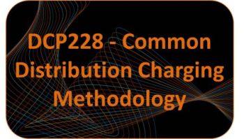 DCP228